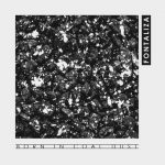 Fontaliza - Born in Coal Dust